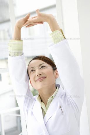 伸びをする女性研究員 FYI00910257