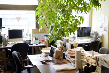 緑のあるオフィス FYI00913612
