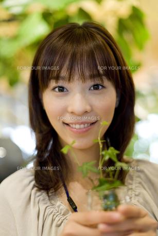 観葉植物を手に持った女性 FYI00913628
