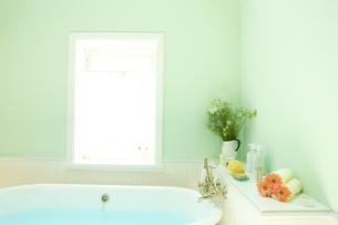 ニゲラを飾った明るい日差しのバスルーム FYI00914667