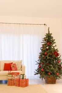 大きなクリスマスツリーがあるリビング FYI00914710