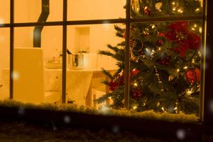 窓越しに見えるクリスマスツリー FYI00914723