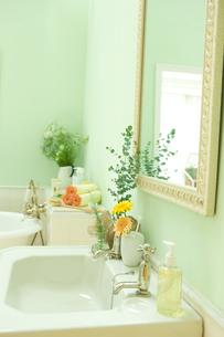 ユーカリとシッシングハーストローズマリーを飾った洗面所 FYI00914728