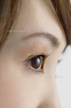 横を見る女性の目元 FYI00915343