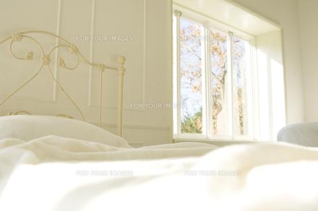 日の差し込むベッド越しに見える窓 FYI00920001