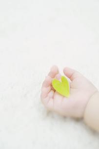 ハート型の葉を持つ赤ちゃんの手 FYI00934655