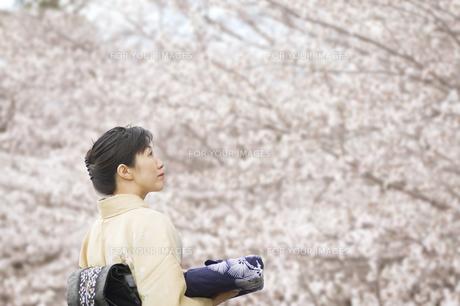 見上げる和服の日本人女性 FYI00934933