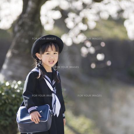 桜の木の下で笑う幼稚園児 FYI00935543