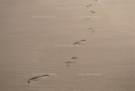 砂浜の足跡 FYI00937177