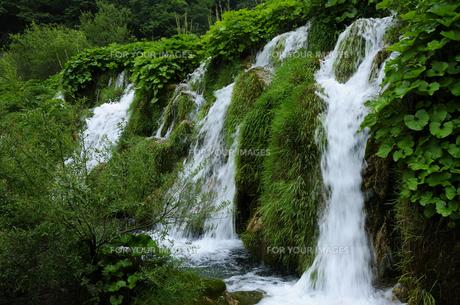 プリトヴィッツェ湖群国立公園の滝の素材 [FYI00940338]