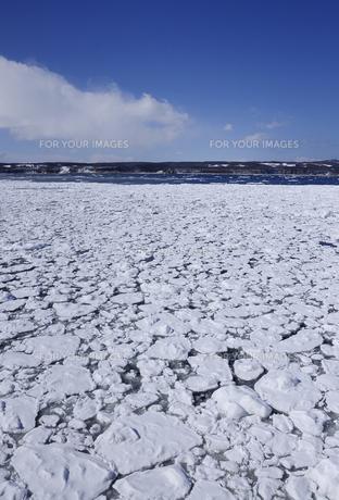 オホーツク海の流氷と空の素材 [FYI00940352]