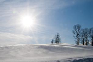 冬晴れの空と雪原 FYI00941856