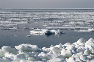 接岸した流氷 FYI00942071