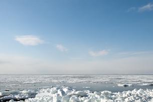 接岸した流氷 FYI00942074