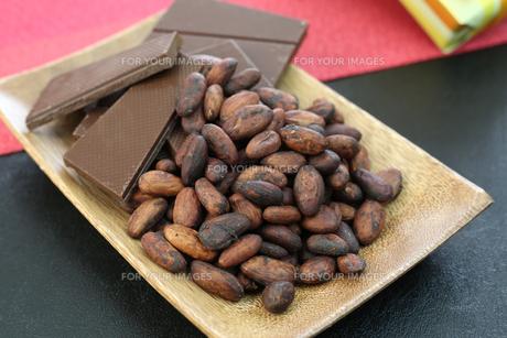 カカオ豆とチョコレート FYI00942900