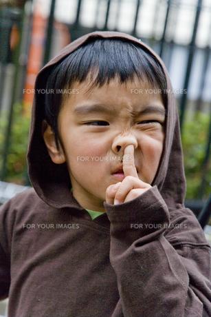 鼻に手を入れる男の子の素材 [FYI00943945]