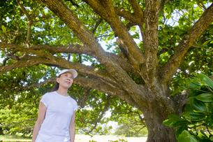 大木の前に立つシニア女性の素材 [FYI00944922]