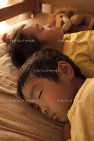 すやすやと眠る二人の男の子の寝顔の素材 [FYI00944972]