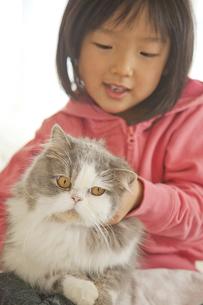 猫を手でなでる少女 FYI00945293