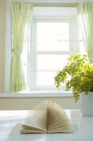 風でめくれる窓際の本 Fyi00959910 気軽に使える写真イラスト素材