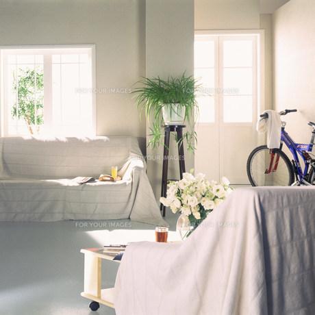 ソファのある部屋 FYI00960405