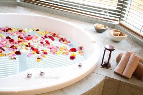 フラワーバス バラの花 FYI00963856