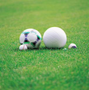 芝生とサッカーボール FYI00969377