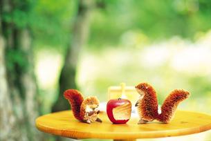 庭のテーブルに置いたリスの置物 FYI00969469