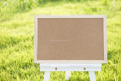 緑の庭のコルクボード FYI00969539