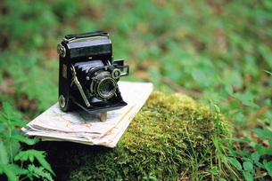 木株の上のクラシックカメラ FYI00969672