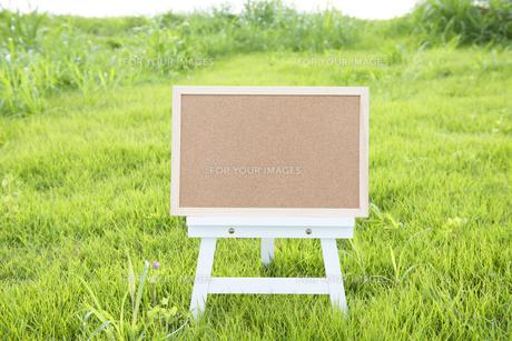 緑の庭のコルクボード FYI00970204