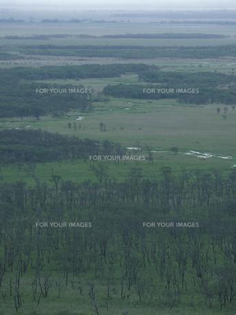 春の釧路湿原 FYI01015092