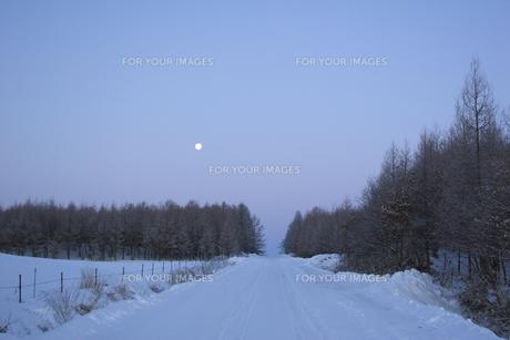 雪道と月 FYI01015489