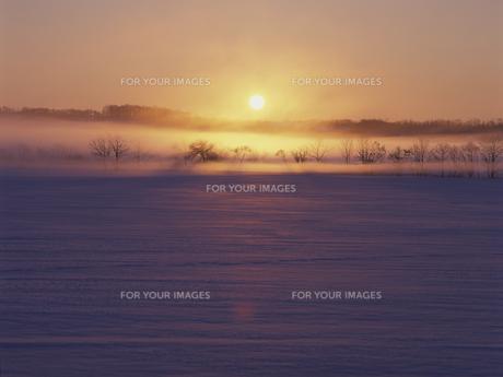 雪原と朝日 FYI01015497