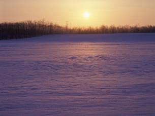 雪原と朝日 FYI01015551