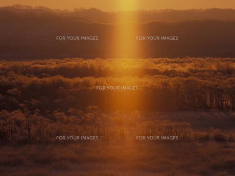 朝焼けに染まる釧路湿原 FYI01015623