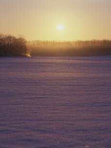 雪原と朝日 FYI01015627