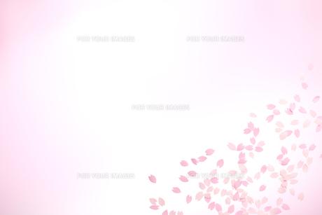 桜の花びらの春イメージ FYI01016613