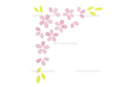 桜の花びらのフレーム FYI01016614