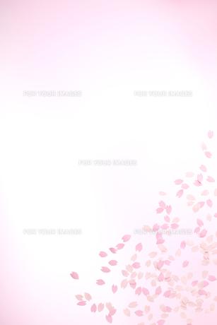 桜の花びらの春イメージ FYI01016653