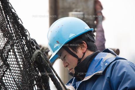 作業する漁師 FYI01030326