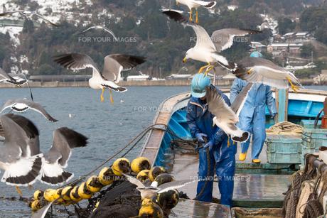 作業する漁師 FYI01030331