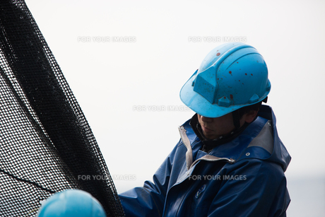 作業する漁師 FYI01030333