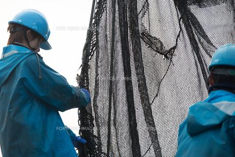 作業する漁師 FYI01030377