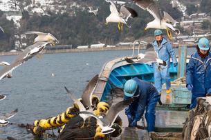 作業する漁師 FYI01030381