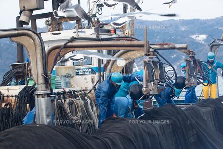 漁師 FYI01030417