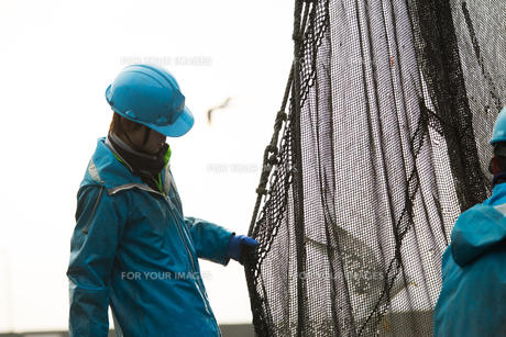 作業する漁師 FYI01030427