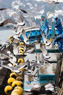 漁師 FYI01030434