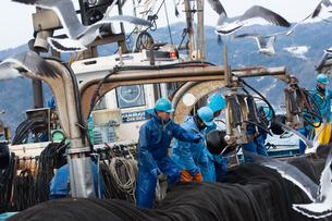 漁師 FYI01030438