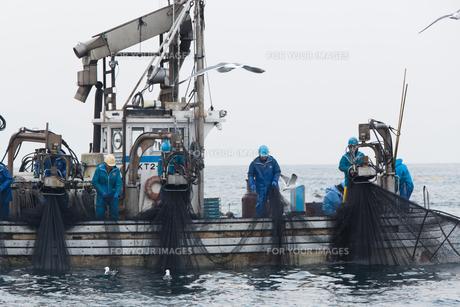 漁師 FYI01030450